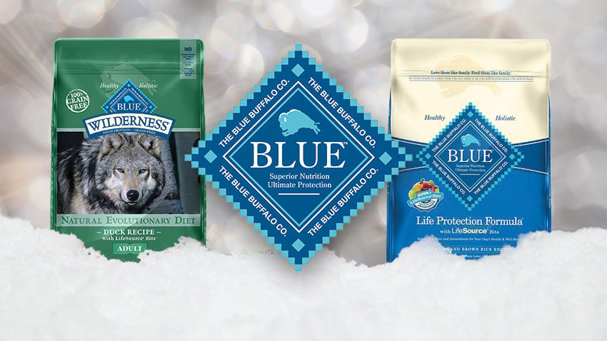 january notorious dog blue buffalo