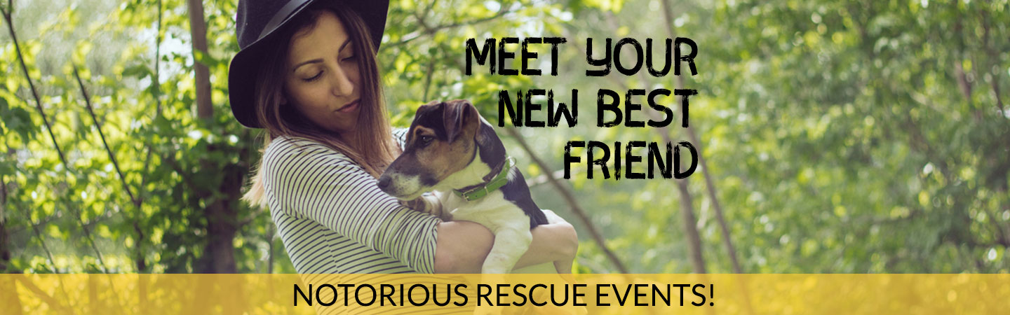 notorious d.o.g. rescue events