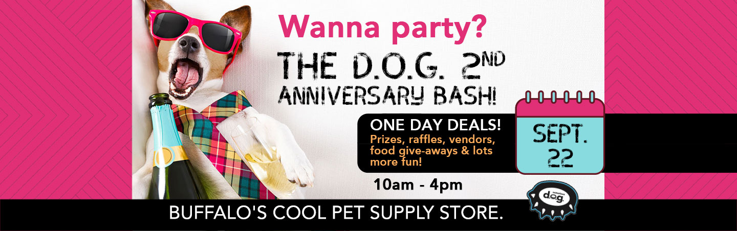 notorious dog 2nd anniversary party