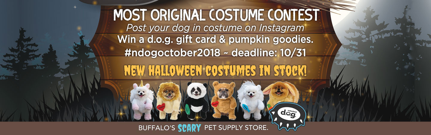 notorious d.o.g. halloween contest