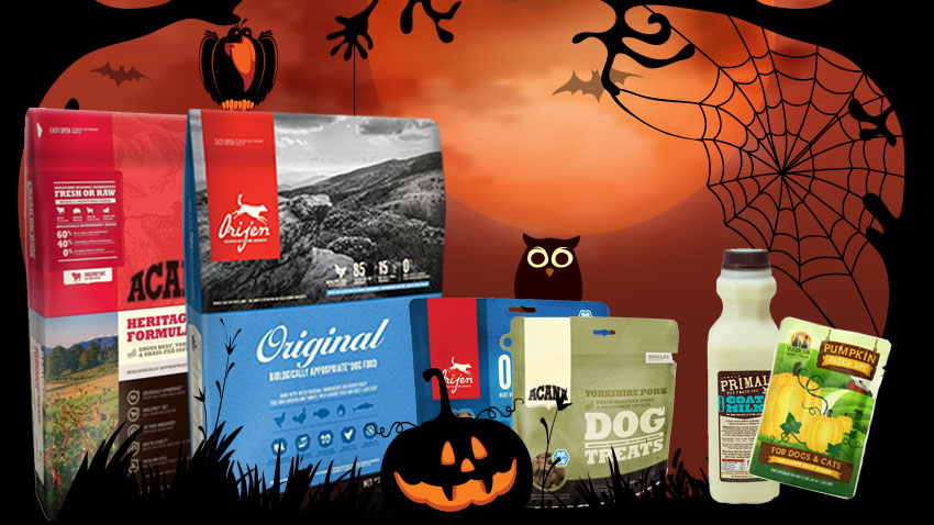 notorious d.o.g. october specials