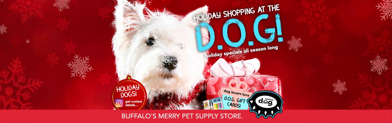 Holiday Shopping at Notorious DOG