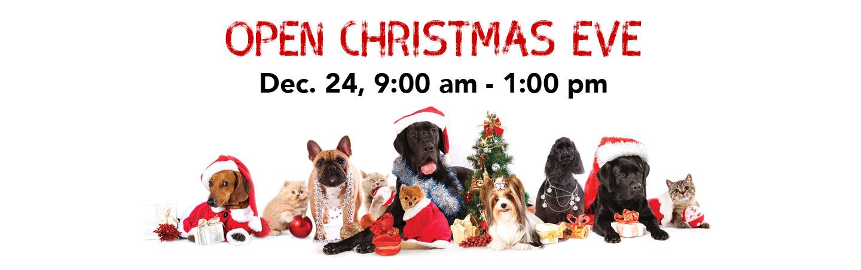 Notorious DOG Christmas Evev