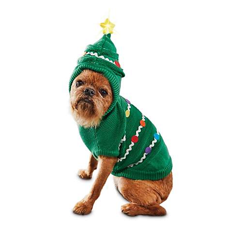 Notorious DOG ugly sweater contest