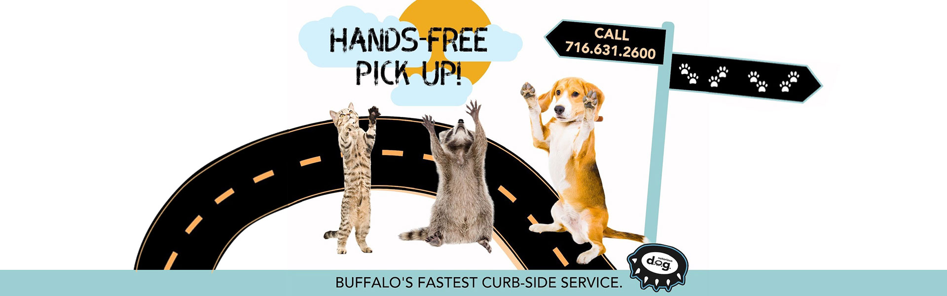 Hands-free curb side pickup at Notorious DOG
