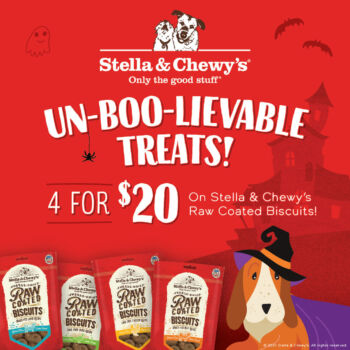 4 Stella and Chewy's biscuit treats for $20